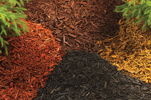 Colored Mulch